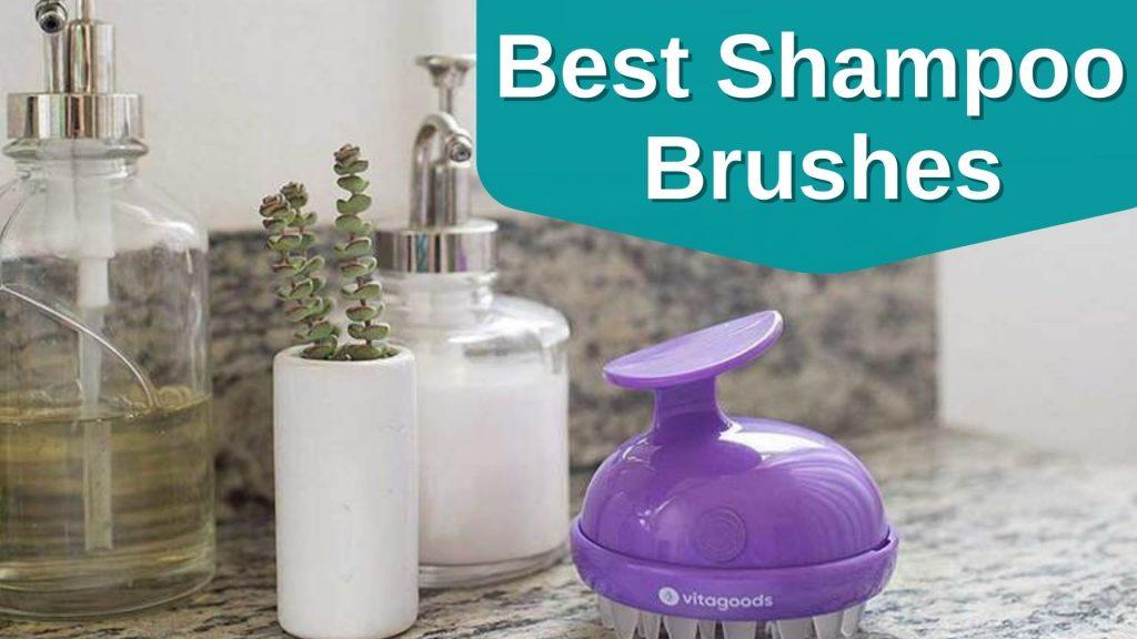 Best Shampoo Brushes
