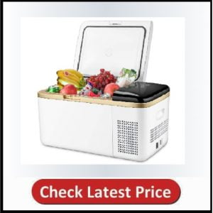 Linsion Quart Portable Refrigerator