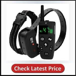 TBI Pro Shock Collar for Dogs with Remote