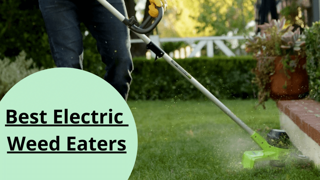 Best Electric Weed Eaters